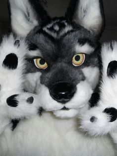 This is an amazing Fursuit I really want it!