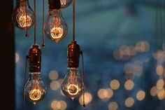Vintage lightbulbs (chandelier and photo by John Reed):
