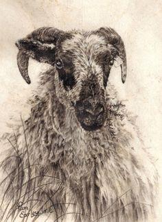 Pamela Earleywine (charcoal drawing on bark paper)