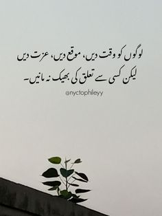 Poetry Quotes In Urdu, Urdu Quotes, Life Quotes, Poetry Feelings, Poetry Collection, True Words, Caption, Quotes About Life, Quote Life