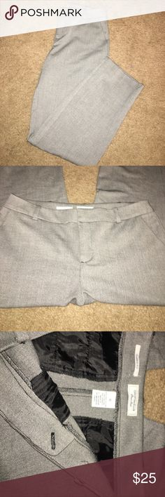 Classic Fit Grey Charter Club Dress Pants Size 10 excellent condition. Worn once I believe. Boot / slight flare bottom. Cute grey color with some black stitching. Very flattering for your butt! Just too big on me now. LIKE NEW Charter Club Pants Trousers