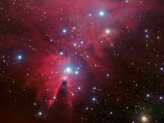 This colour image of the region known as NGC 2264 — an area of sky that includes the sparkling blue baubles of the Christmas Tree star cluster and the Cone Nebula — was created from data taken through four different filters with the Wide Field Imager at ESO's La Silla Observatory, 2400 m high in the Atacama Desert of Chile in the foothills of the Andes. The image shows a region of space about 30 light-years across.  Credit: ESO