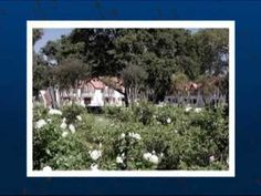River Meadow Manor Conference Venue in Irene, Pretoria, Gauteng Pretoria, Training Courses, Irene, Conference, River, City, Plants, Cities, Plant