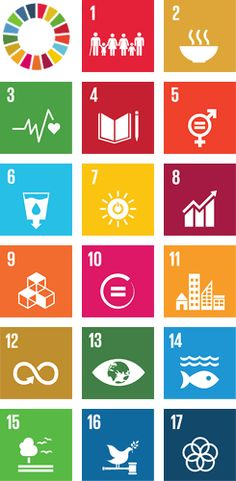 images for UN sustainable development goals - Google Search