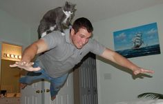 25 Pictures Taken At Exactly The Right Moment Cat Rides Man in leap of faith