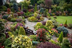 After: 2007 Upper garden oval beds (summer)