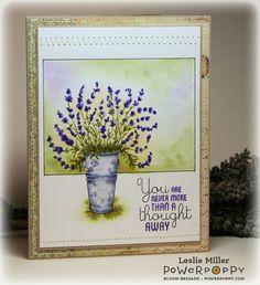 Lavender | Power Poppy by Marcella Hawley