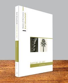 Book_Mockup.jpg (720×878)