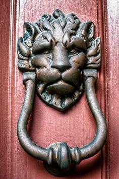 Charleston Door Knocker - Lion's Head by texsonsc, via Flickr