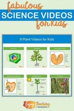 9 Plant Videos for Kids - Enjoy Teaching with Brenda Kovich Elementary Science Classroom, Science Education, Teaching Science, Student Learning, Teaching Resources, Physical Science, Life Science, Teaching Ideas, Classroom Ideas