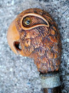 Unusual Antique Parrot HEAD handled cane walking stick