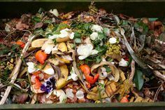 Organic Fertilizers Rife With Microplastics: Study Compost, Strawberry Seed, Le Diner, Organic Fertilizer, Small Farm, Food Waste, Small Gardens, Paella, Vegetable Garden
