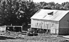 Black & White Berks County Barn|Love's Photo Album