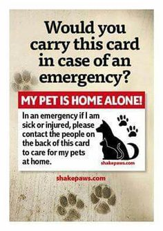 MY PET IS HOME ALONE! I'n an emergency if I'm Sick or injured, please Contact the people on The back of this card To care for my pets At home.
