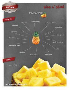 AROMA: Pineapple #wines #infografía