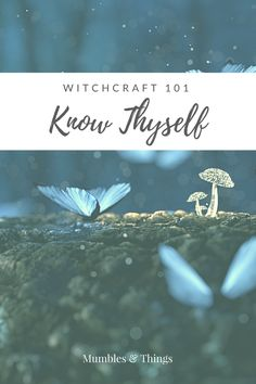 Witchcraft Know Thyself — Mumbles & Things If you want to learn to be a witch you want to take control over your life, you need to start with the basics and that is means getting to know yourself and taking action to meet your goals. Wicca For Beginners, Witchcraft For Beginners, Witchcraft Books, Green Witchcraft, Traditional Witchcraft, Know Thyself, Wiccan Crafts, Eclectic Witch, Baby Witch