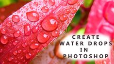 Photoshop Tutorial : How to make Realistic water drops in Photoshop