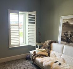 Shutters are an ideal solution for Tilt and Turn windows. We use a specially designed outside mounted frame. Here is a job we did in Greystones Wicklow Tilt And Turn Windows, Shutters, Living Room Decor, The Outsiders, Rice, Couch, Stylish, Furniture, Instagram