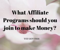 What Affiliate Programs should you join to make Money? Think Covert kit, Linqia, Aweber. Want to make money with Affiliate Marketing, here is how.