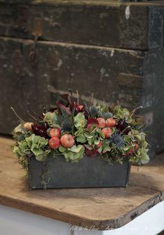 Balkonkasten - New Ideas Beautiful Flower Arrangements, Floral Arrangements, Beautiful Flowers, Deco Floral, Arte Floral, Fall Flowers, Dried Flowers, Hydrangea Flower, Hydrangea Garden
