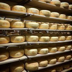 Aging room at Gunn's Hill Artisan Cheese Artisan Cheese, Tourism, Oxford, Room, Turismo, Bedroom, Rooms, Oxfords, Travel
