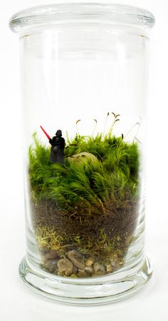 """geekymerch: """" We've got an amazing Moss Terrarium to give away thanks to Moss Love! Moss Love specialise in beautiful terrariums for you to display in your home. From the gorgeous to the geeky,."""