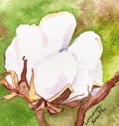 Watercolor Print Original Art Cotton Bolls by SouthernBirdStudio