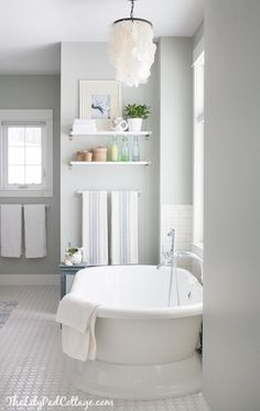 "Benjamin Moore Color...""arctic gray."" A cool gray that has blue undertones."