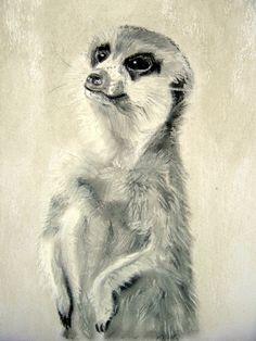 """Zeichnung """"Erdmännchen"""" Pastellkreide auf Papier von Manuela Jung (MJ-Arts)  http://de.dawanda.com/product/31241797-Erdmaennchen---Unikat-von-MJ"""