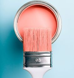 Are you planning to paint your home a new color for the new year? Coral Colour Palette, Coral Color, Coral Pink, Deco Rose, Coral Walls, Peach Aesthetic, Live Coral, Colour Board, Paint Cans