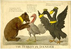 I'm beginning to think that the long decline of the Ottoman Empire, accompanied by satirical characterizations of its most central country, led to the deterioration of the bird's image as well. Caricatures of the bird/country (like those below) begin to be a lot more prevalent than naturalist ones (like those above) after the turn of the nineteenth century.
