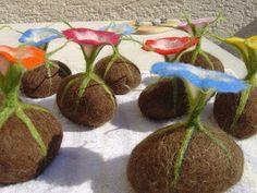 Filzwerkstatt beautiwool. Flowering felt bulbs