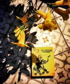 Nostalgia is a yellow hardback book from the 80s the peak of Soviet literature for children available in English translation in India. The books were cheap well made and often wonderfully told. The Adventures of Dennis stands the test of time it's still a really good kids book full of small loving observations of life from a child's view. My copy has been read and reread so many times since I acquired it in the late 80s but the pages are still crisp and the binding is firm and flipping…