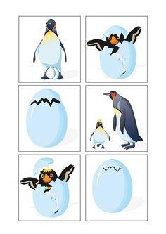 Bu sayfamızda penguen konulu birçok etkinlik bulabilirsiniz.Evde ya da okulda penguen konulu etkinliklerimizi çok rahat kullanabilir ve çocuklarla eğlenceli vakit geçirebilirsiniz.Bu sayfamızda; Penguen sudoku çalışması Penguen sayı çalışmaları Penguen büyük-küçük çalışması Penguen gölge eşleştirmeleri Penguen konulu dikkat çalışması Penguen örüntü çalışması Penguen renk eşleştirmeleri Penguen puzzle çalışması Penguen sayı tamamlama çalışması Penguen tangram konulu çalışma Penguen balık…