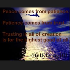 Peace comes from patience. Patience comes from trust. Trusting in all of creation is for the highest good of all. #trust #love #peace #patience #here #now #appreciate #unconditional #awareness #awake #alive #expandyourheart #live #loveyourself #laugh #life #liveinthemoment