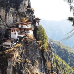 Tiger's Nest Paro Bhutan  Tag a friend who is like this . - Follow our IG @eupterrae  for more Great Travel & Nature photos ================================== TAG #eupterrae for a shoutout   @magicaloflife ================================== #nature #sky #sun #summer #beach #beautiful #pretty #sunset #sunrise #blue #flowers #night #tree #twilight #clouds #beauty #light #cloudporn #photooftheday #love #green #skylovers #dusk #weather #day #red #iphonesia #mothernature