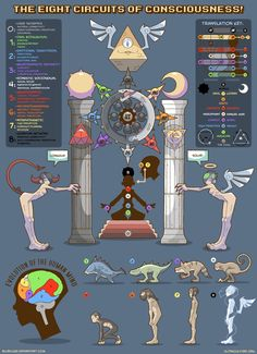 The 8-Circuit model maps the possible levels of consciousness, as developed by Timothy Leary and Robert Anton Wilson. Explore them with this handy guide!