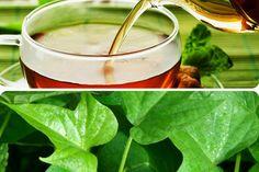 benefícios-chá-de-folha-de-batata-doce