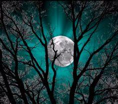 Quando o dia apaga a luz a lua faz magia...  ♪♫Boa noite!♪♫