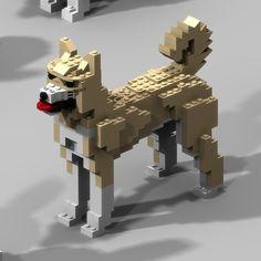 Jindo dog-yellow