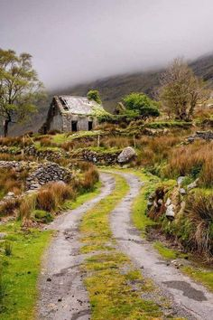 Abandoned in Ireland..