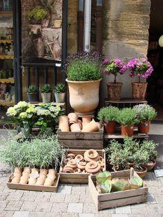 Fabulously French: vendredi fleurs...