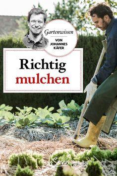 Das richtige Mulchen ist für die Erhaltung eines gesunden Bodens äußerst wichtig. Gärtner Johannes Käfer erklärt warum und was es dabei zu beachten gibt. #richtigmulchen #mulchen #gesundergarten #gesunderboden #garten #gartentipp #gartentipps #gartenarbeiten #natur #gartenliebe #meingarten #pflanzen #gartenzeit #gartenarbeit #gartenblog #gartengestaltung #natur #gartenfreude #gartenpflege #meingartenreich #naturgarten #gartenideen #gartenidee #servus #servusmagazin #servusinstadtundland Johannes, Vegetables, Conservation, Microorganisms, Plant Parts, Mulches, Yard Maintenance, Vegetable Recipes, Veggies