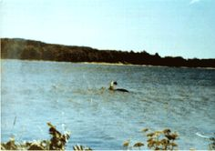 Lake Monster most likely to be discovered - Cast Your Vote !