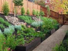 sloped backyard home landscape with black mulches and fences : Sloped Backyard Home Landscape. home landscaping ideas,home landscaping pictures,sloped backyard landscape,sloped backyard landscape ideas,sloped backyard landscaping designs Sloped Backyard Landscaping, Terraced Landscaping, Backyard Garden Design, Landscaping Ideas, Sloping Backyard, Backyard Ideas, Landscaping On A Hill, Backyard Patio, Steep Hillside Landscaping