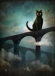 Christian Schloe the Austrians.-Surrealist and Steampunk - into the night