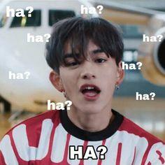 Memes Funny Faces, Funny Kpop Memes, Exo Memes, Cartoon Memes, Kdrama Memes, Cute Love Memes, Lucas Nct, Crazy Kids, Good Jokes