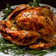 Butter, Herbes de Provence & citrus combine with savory veggies for a succulent holiday turkey and delicious white wine pan gravy!