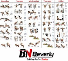 Best 6 Day Workout Routines For Men No 1 Bodybuilding And