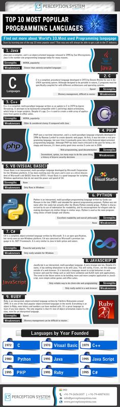 Top 10 Programming Languages. Infographic.